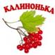 Группа Калинка