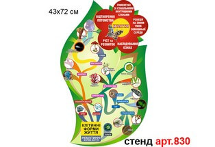 Систематика живих організмів №830