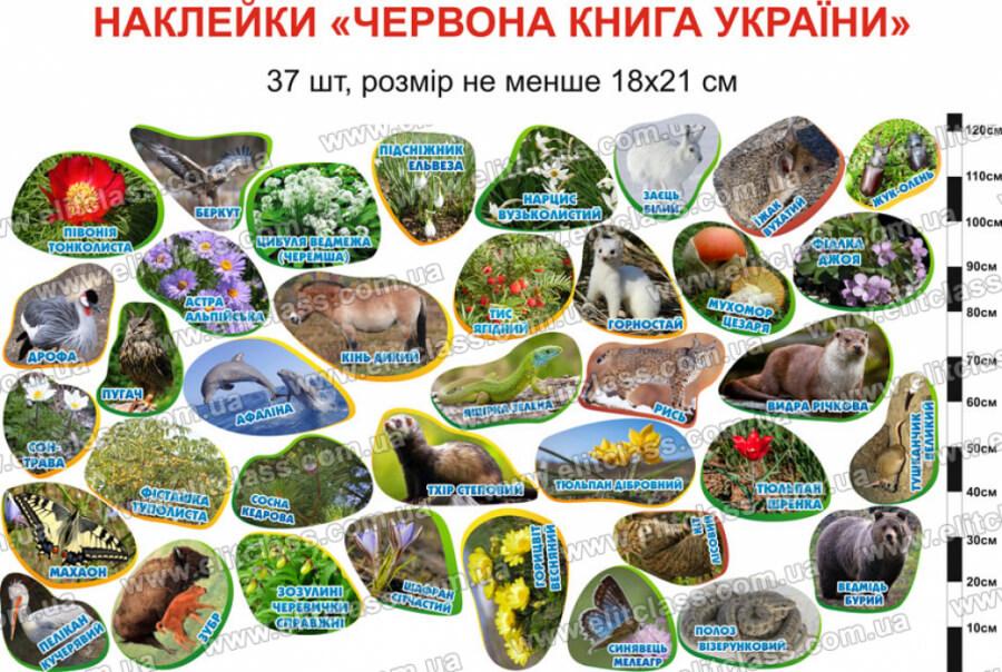 красная книга украины, наклейки красная книга украины, червона книга України, наклейки червона книга України,