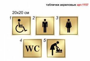 Табличка на туалет акрилова №1157