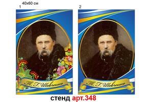 Портрет Т.Г. Шевченко №348
