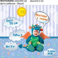 Фотозона на день рождения 1 годик №F009